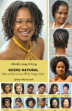 Marvelous Books About Black Hairstyles Black Or African American Hair Hairstyle Inspiration Daily Dogsangcom