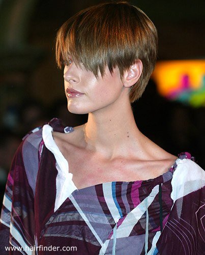 Modern Pixie Hair Cut With Bangs Layered In The Back And