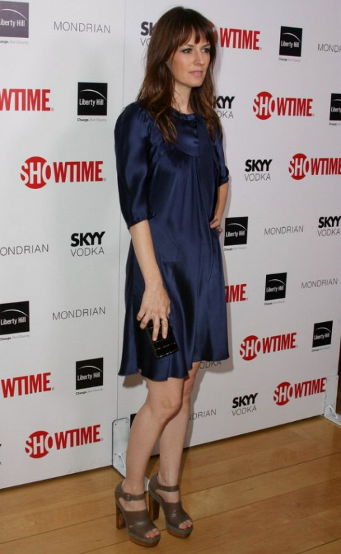 Rosemarie Dewitt Wearing A Natural Long Hairstyle That