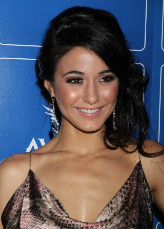 Emmanuelle Chriqui Long Hair Worn With Pouf In The Crown