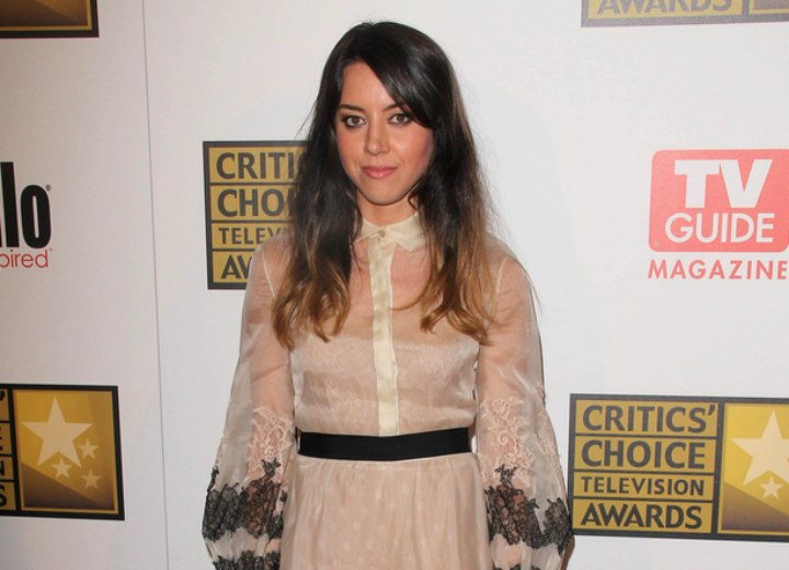 Sheer dress with a buttoned up collar - Aubrey Plaza