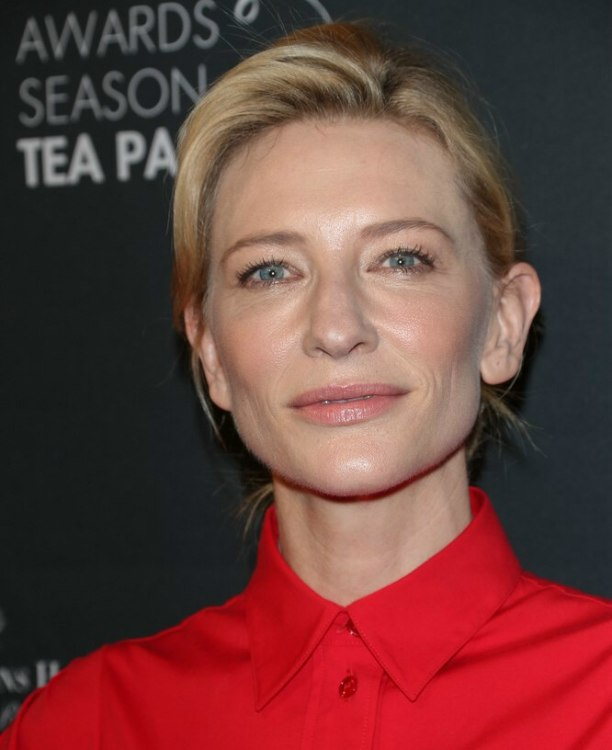 Cate Blanchett Updo With A Bun And A Retro Dress With