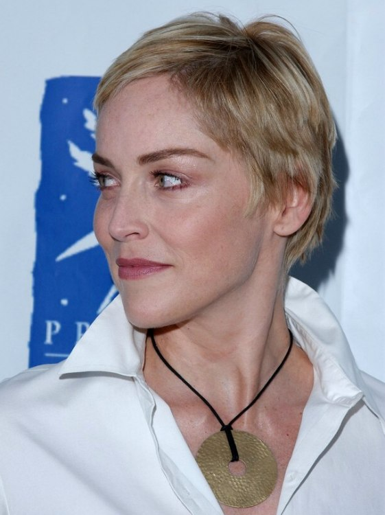 Razor Side By Side >> Sharon Stone | Perfectly cut pixie with the hair left longer over the ears