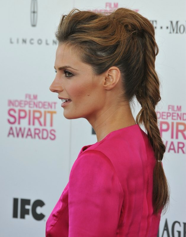 Stana Katic Updo Ponytail Hairstyle With A Fishtail Braid