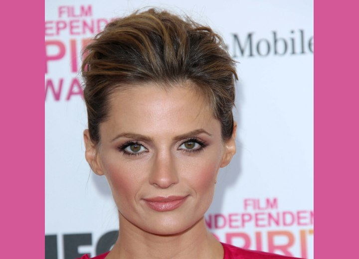 Stana Katic wearing her hair up