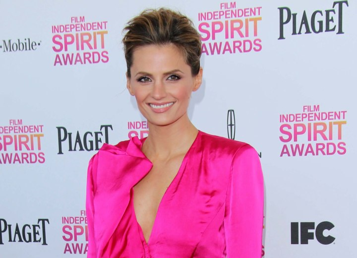 Stana Katic look with a pink wardrobe