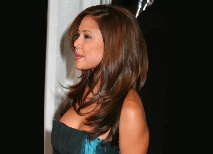 Side view of Vanessa Minnillo's long hair