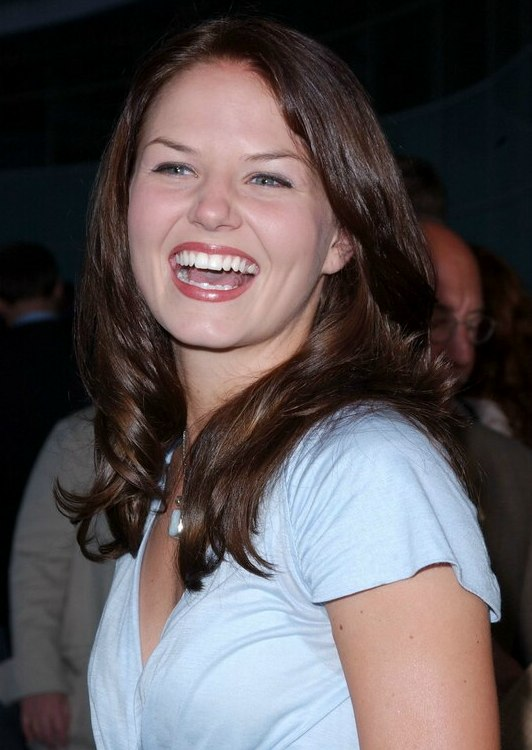 Jennifer Morrison S Long Brown Hair With Idle Curls Around