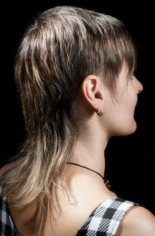 Mullet for women, hairstyle with short layers on the sides and long ...