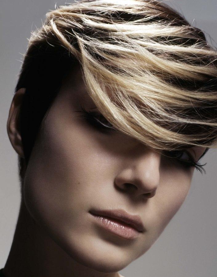Enjoyable Short Hair Blonde And Black Hairstyle Inspiration Daily Dogsangcom