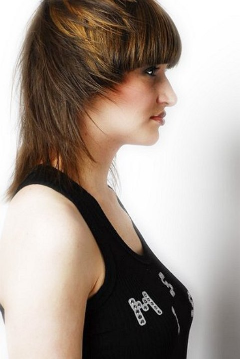 Short Layers Hairstyle. layers hair style