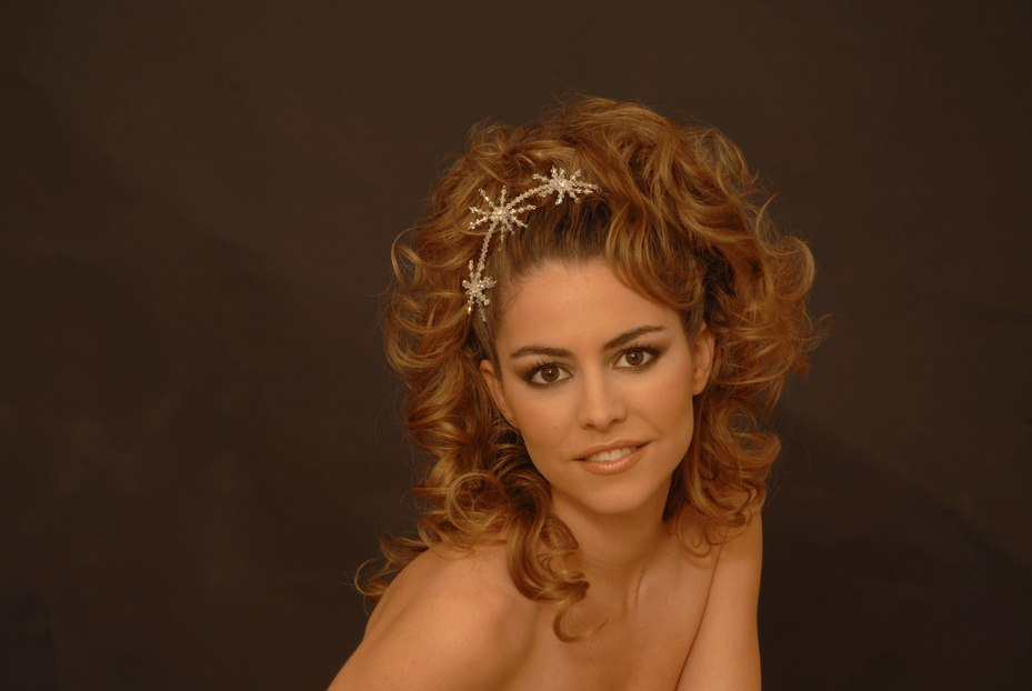 wedding hairstyles long hair. Photo of wedding hairstyle for long hair
