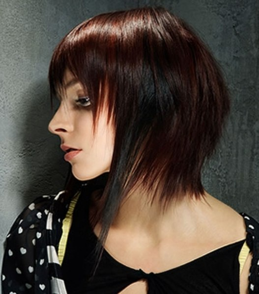 Concave Bob Hairstyles Back View