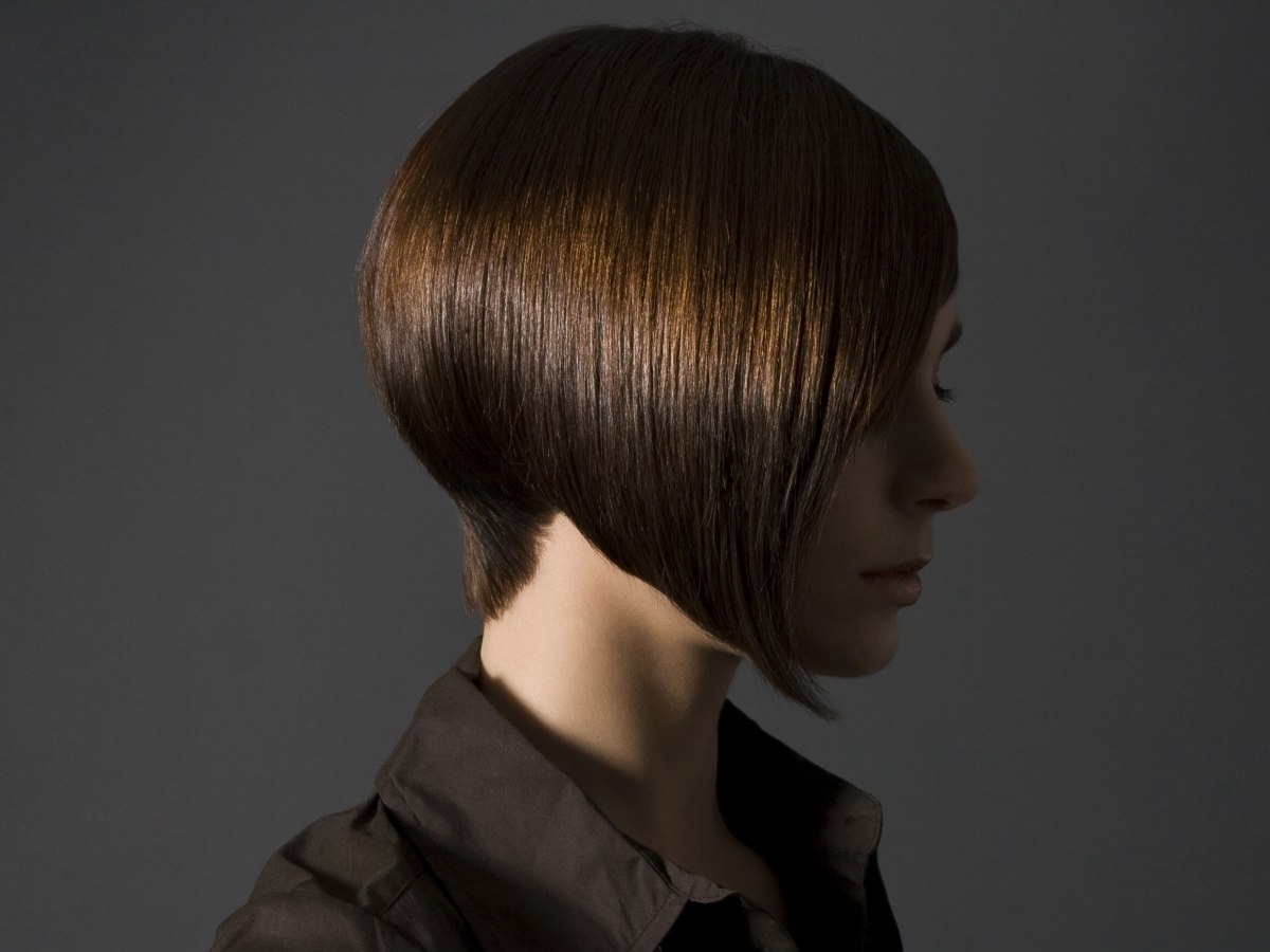 Awe Inspiring Angled Bob With A Concave Nape And One Shorter Side Short Hairstyles For Black Women Fulllsitofus