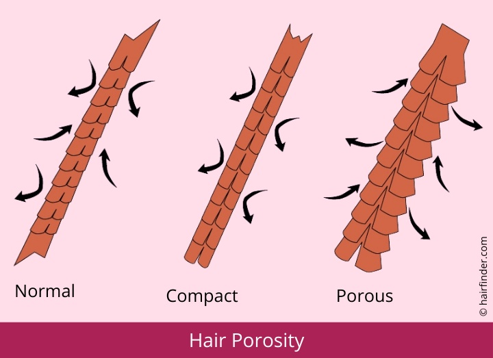 Hair Porosity And How To Determine Or Measure The Porosity Of Your Hair