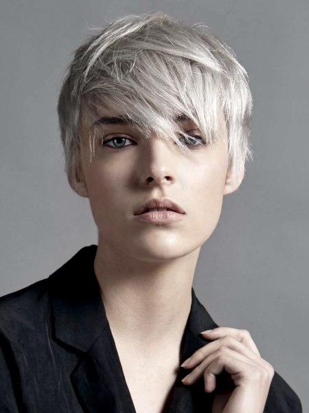 short hair with a gray color