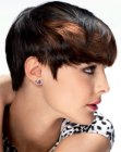 Top-weighted pixie cut with elements of a bowl cut