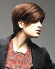 Versatile short haircut with long layers and a side partition