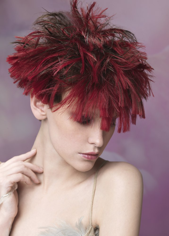 Joyful Short Hairdo With Brown And Wine Red Hair Colors