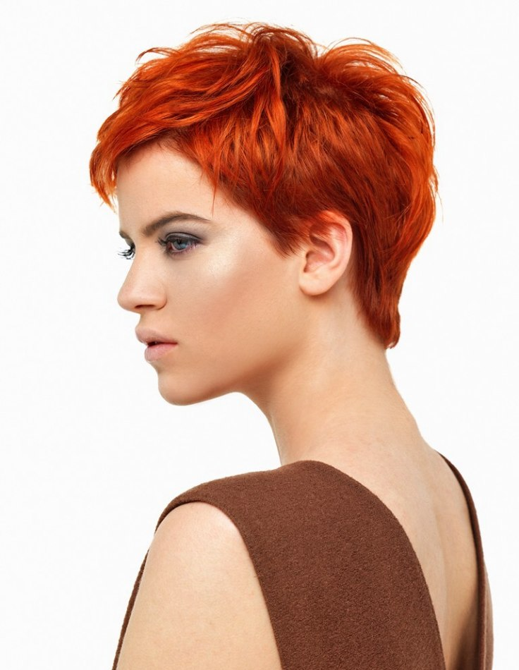 Short Cropped And Very Modern Pixie