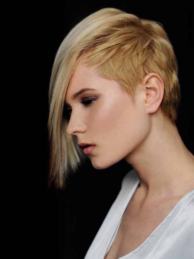 half hairstyles : Half bob hairstyle with extreme chopping and different hues