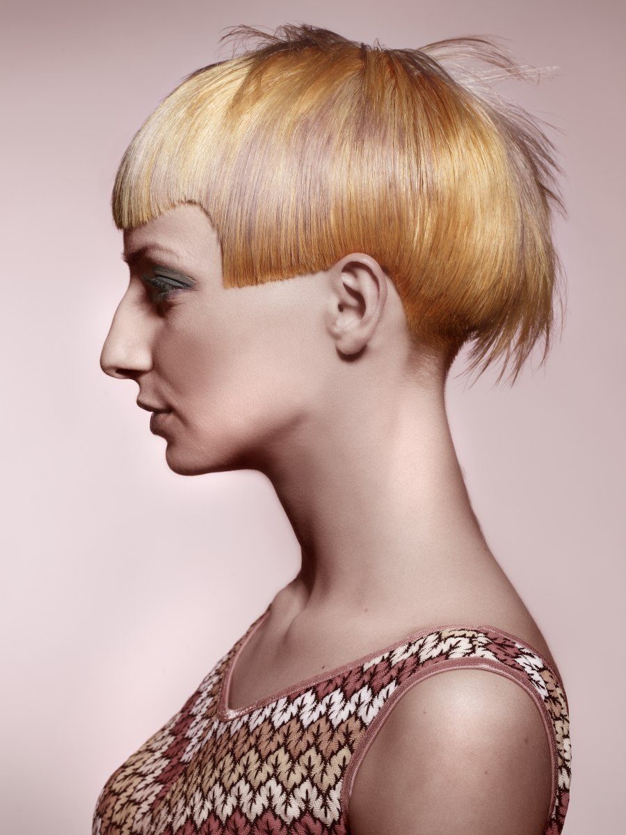 Short Haircut With Different Hair Colors Applied In