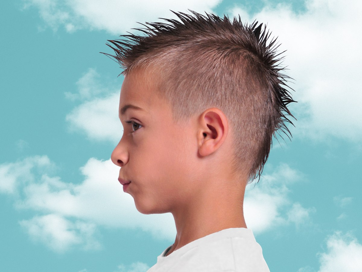 Mowhawk Hairstyle For Little Boys