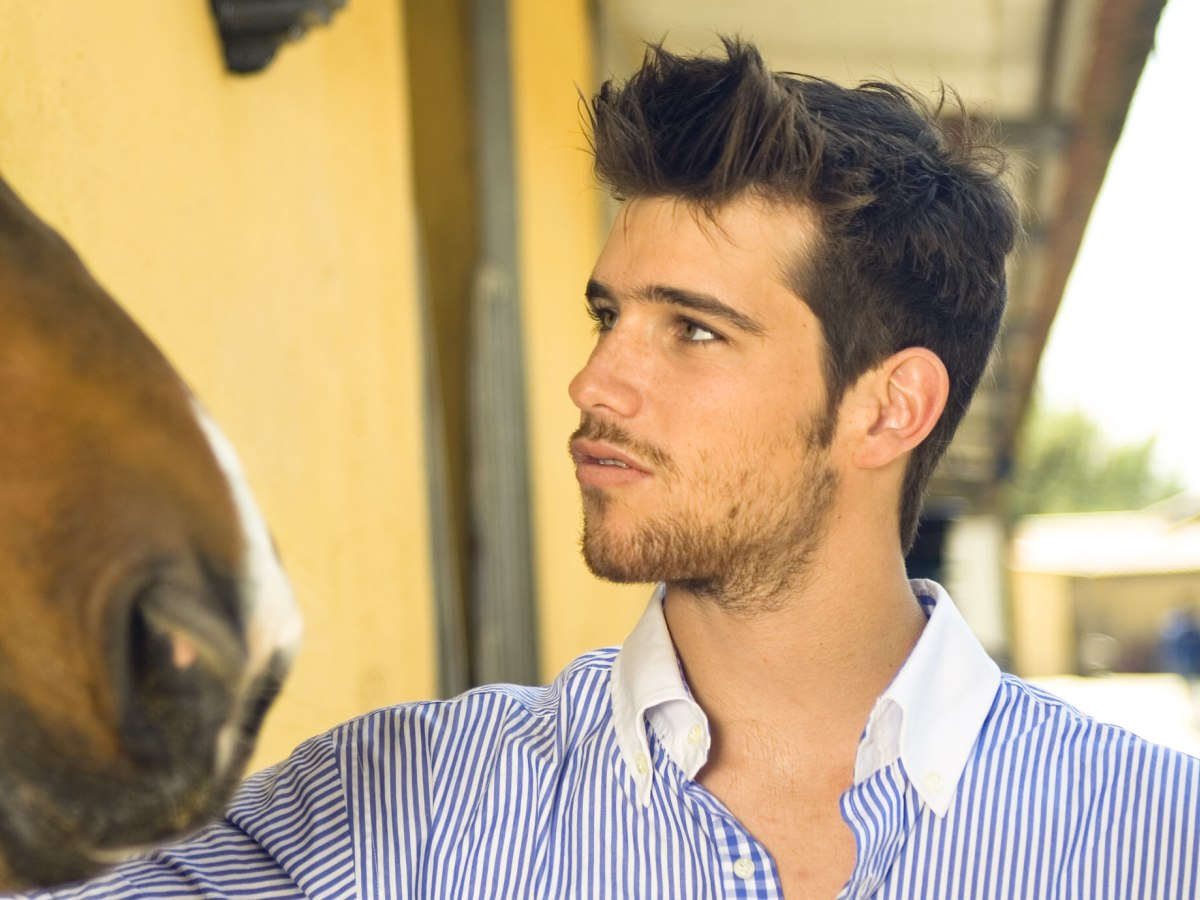 Stylish male hairdo with short sides and longer hair on top