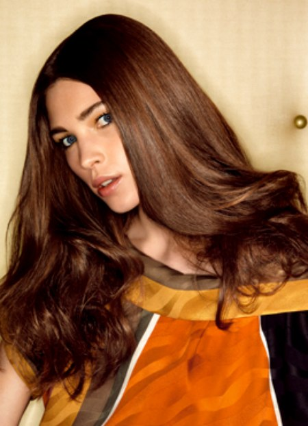 Long Saddle Brown Colored Hair With Ends That Cluster Into A Mass Of