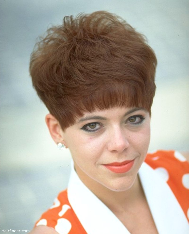 Swell Nostalgic Short Clipped Hairstyle Inspired By The 60S And 70S Short Hairstyles For Black Women Fulllsitofus