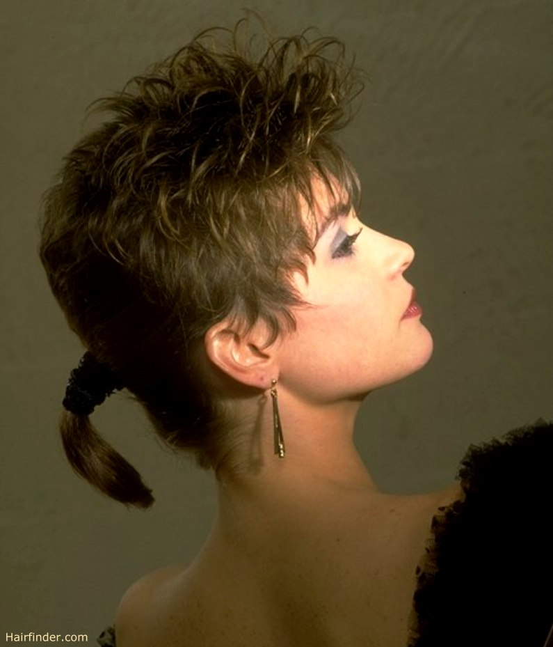 Hairstyle With A Short Ponytail