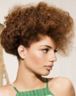afro style updo