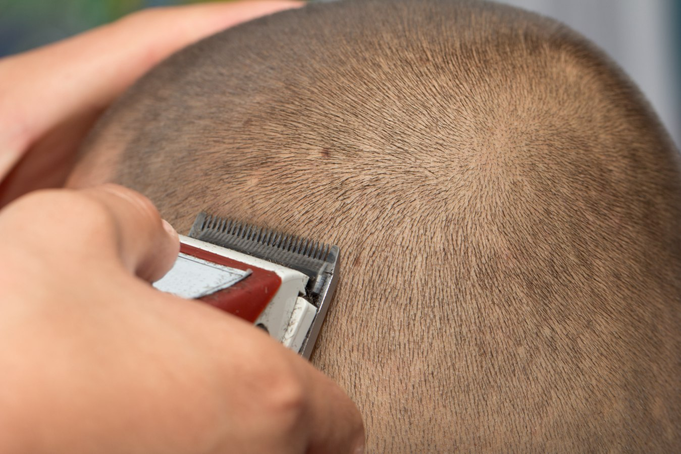 Where To Get Back Shaved