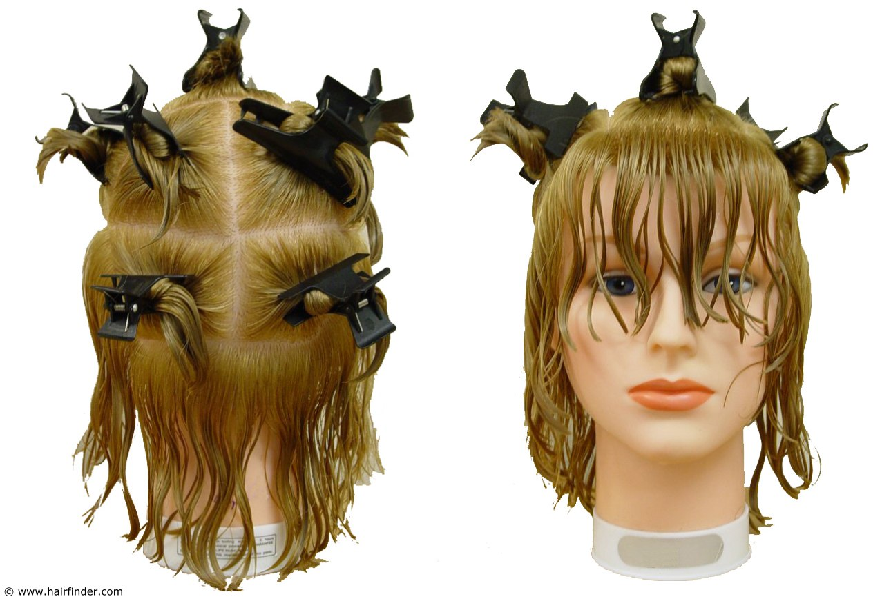 Sectioning Hair In Preparation For Haircutting 7 Section Parting