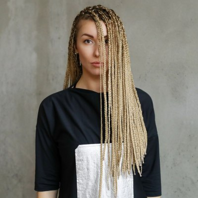 hair with braided sections