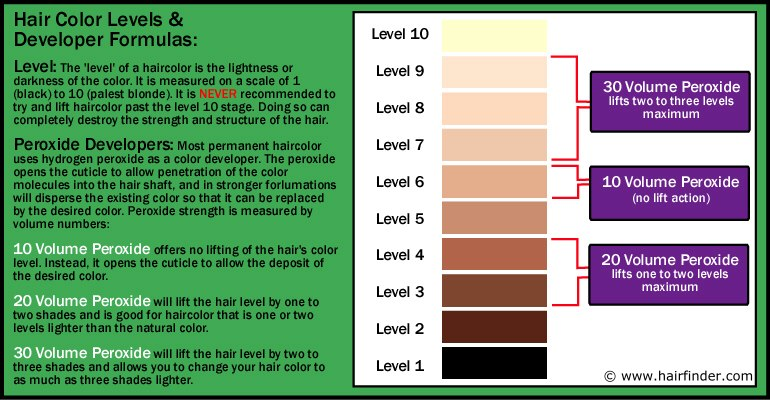Haircolor Levels  Peroxide Developer  Lighteners