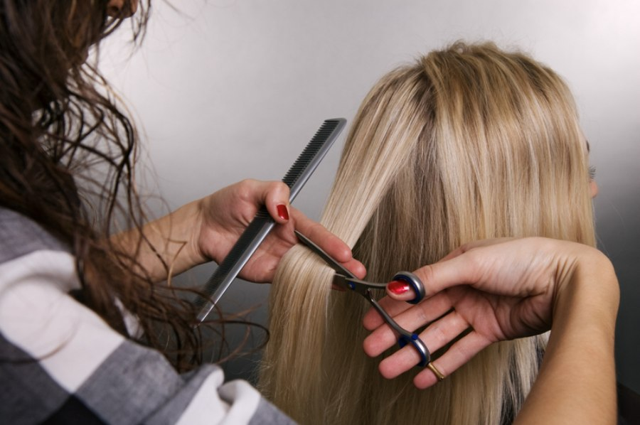 What Is Hair Cutting : Hair stylist cuttting hair